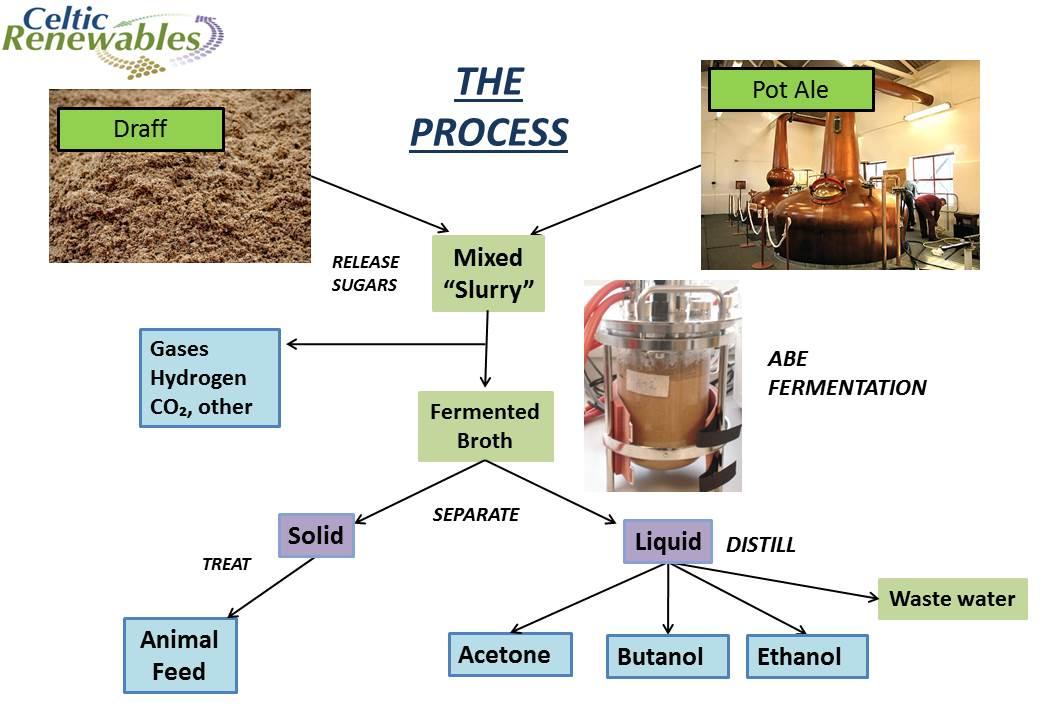 fermentation research paper